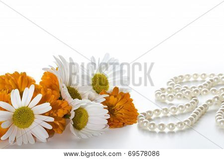 Orange And White Flowers