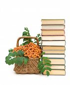 stock photo of mountain-ash  - stack of books and a wicker basket with a red mountain ash berries on a white background - JPG