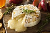 picture of brie cheese  - Homemade Baked Brie with Honey and Rosemary - JPG