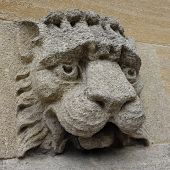 stock photo of gargoyles  - Carved stone gargoyle with lion like face - JPG