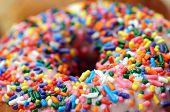 image of kiddy  - closeup sugar sprinkle on top of donut  - JPG