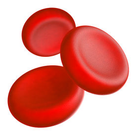 picture of hemoglobin  - Illustration of human blood cells  - JPG