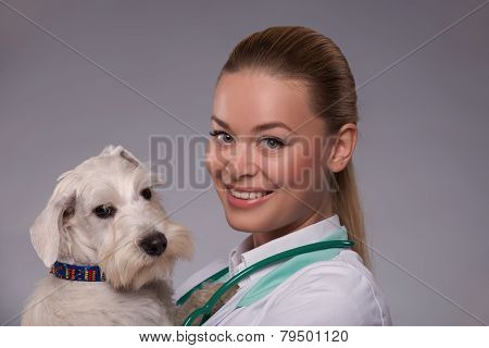 Female veterinarian examines little dog