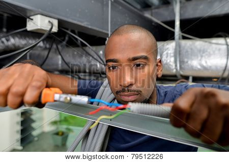 Electrician likes his job