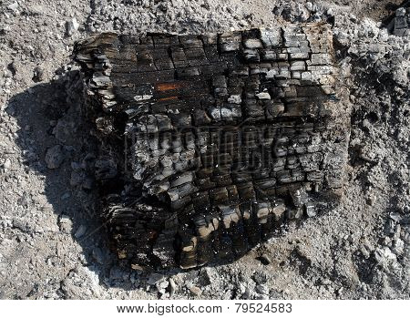 Burnt Firewood