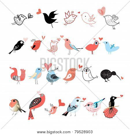 Bright Set Of Birds
