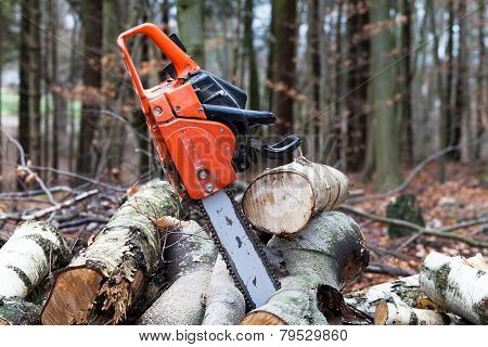 Chainsaw on a woodpile in the forest