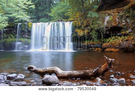forest river, Wales, UK