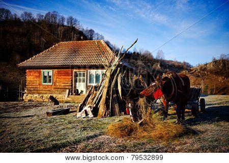 old wooden house in Fundatura Ponorului, Hunedoara county, Romania