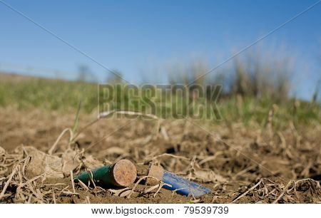 Rusty Spent Shotgun Cartridges