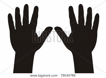 Hands With Five Fingers Spread