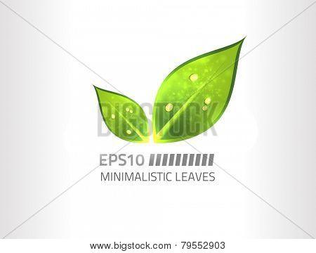 Vector minimalistic leaf design against white background