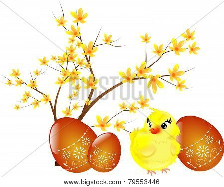 Easter Eggs With Chicken And Twig Of Laburnum