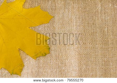 Autumn Leaf Background On Textile Texture