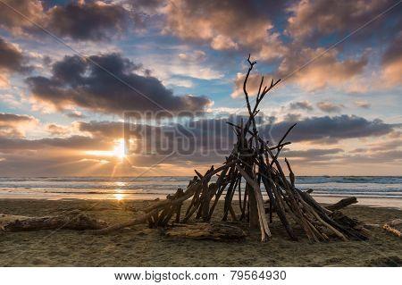 Beach Wood Shelter