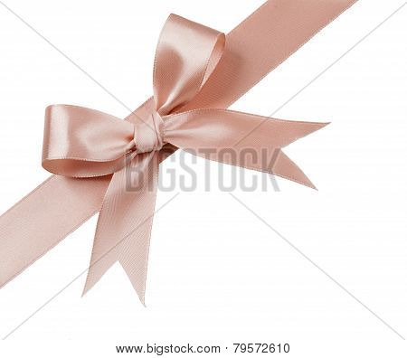Brown Bow Isolated On White Background