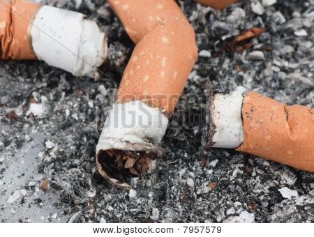 Macro Of Three Cigarette Buds In The Ashtray