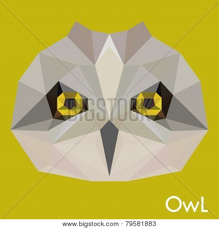 Polygonal Geometric Triangle Abstract Owl Background