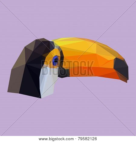 Polygonal Geometric Triangle Abstract Toucan