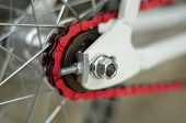 image of bicycle gear  - lose up on a bicycle rear tire chain and gears - JPG