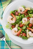 image of shrimp  - Plate of Italian shrimp salad with shrimp tomatoes artishocke hearts Romane lettuce leaves fava beans and pine nuts - JPG