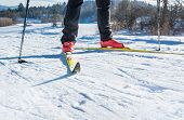 image of nordic skiing  - Cross country skiing - JPG