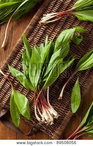Raw Organic Green Ramps