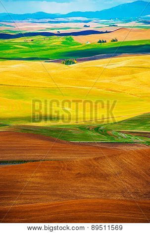 Colorful Butted Farmlands