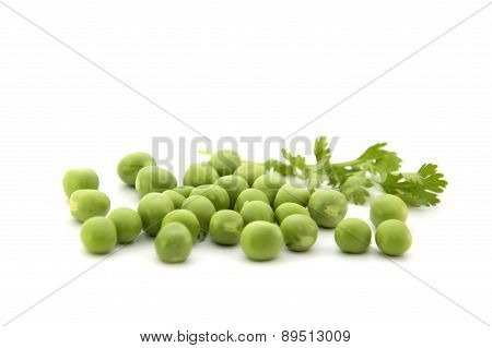 Fresh green peas with coriander leaves