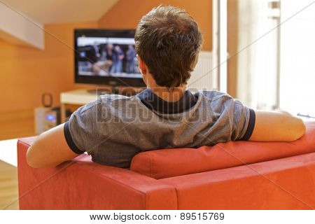 Rear view of young man watching television