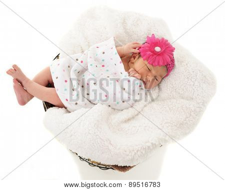 Overhead view of a newborn girl sleeping in a blanket-lined wire basket.  On a white background.