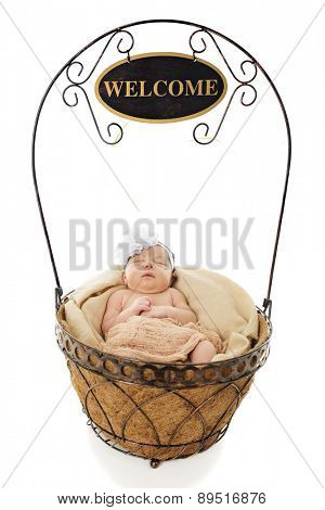 An adorable newborn contentedly sleeping in a wire basket from which a