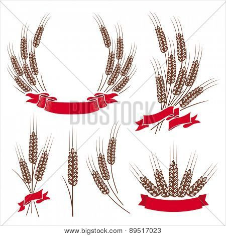 Design elements with wheat ears. Vector set.