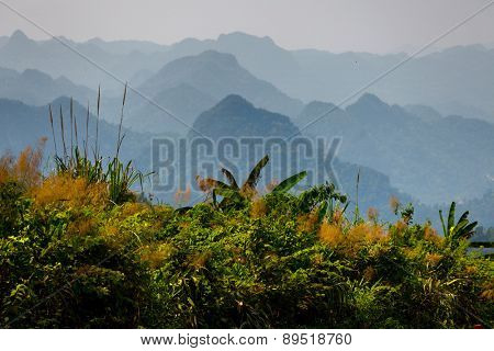 Limestone mountains in the National Park of Phong Nha Ke Bang, Vietnam