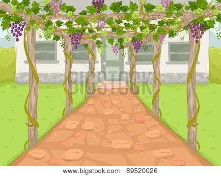 Illustration of a Wine Estate with a Path Covered by Grape Trellises Leading to the Main House