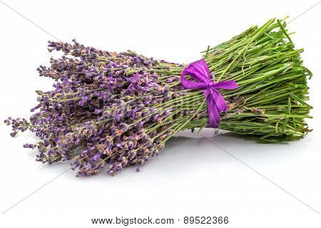 Bouquet Of Lavender In Close-up