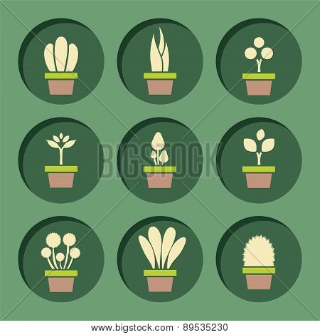 Set Of Pot Plants Symbol.