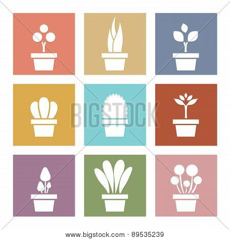Set Of White Pot Plants Symbol.