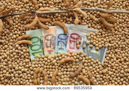 Agricultural Concept, Soybean And Euro Money