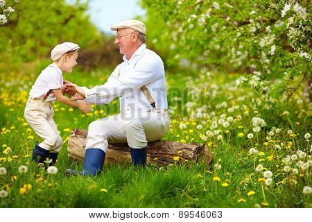 Happy Grandfather And Grandson Playing In Spring Garden