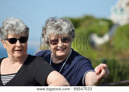 Happy elderly twin sisters outside