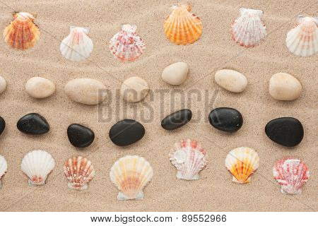 Frame Made Of Seashell And Stone On A Wavy Sand