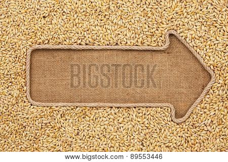 Pointer Made From Rope With Grain Barley  Lying On Sackcloth
