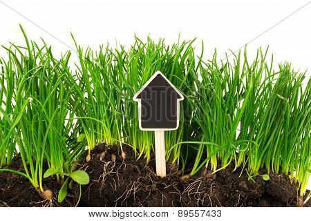 Gardening Concept: Grass, Soil, Board For Text
