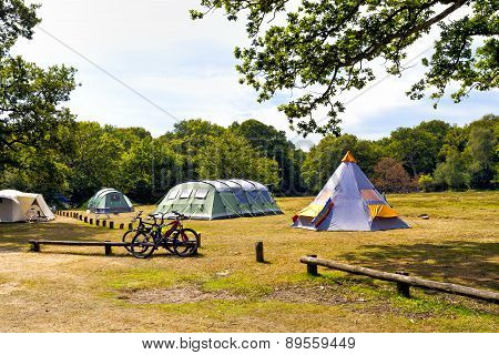 Colorful tents in a forest campsite on a sunny summer day