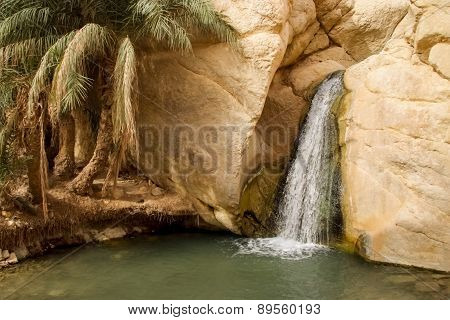 Waterfall In Mountain Oasis Chebika In Tunisia