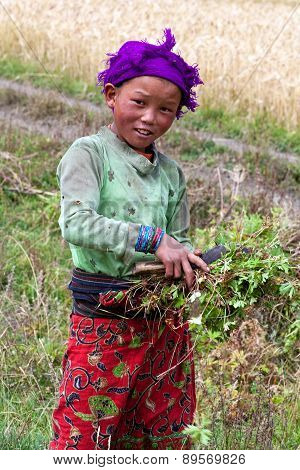 Nepalese Girl In Dolpo, Nepal
