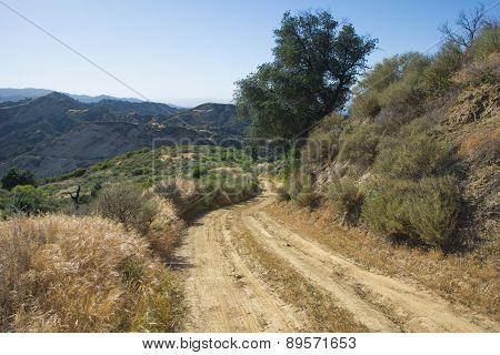 Dirt Road In California Hills