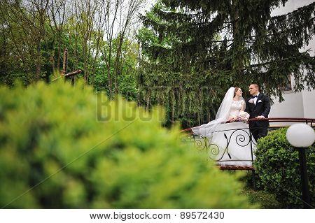 Wedding Couple At The Little Bridge