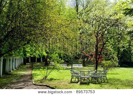 Lawn Furniture In Garden